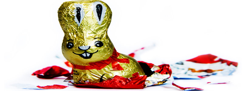 rsz_gold_rabbit