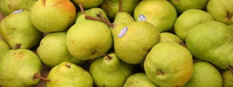 rsz_pears