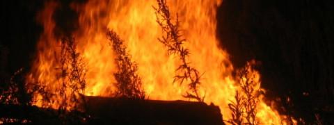 rsz_fire2