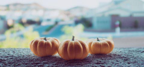 rsz_pumpkin-neonbrand-398771-unsplash