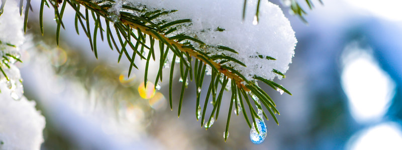 rsz_winter_2